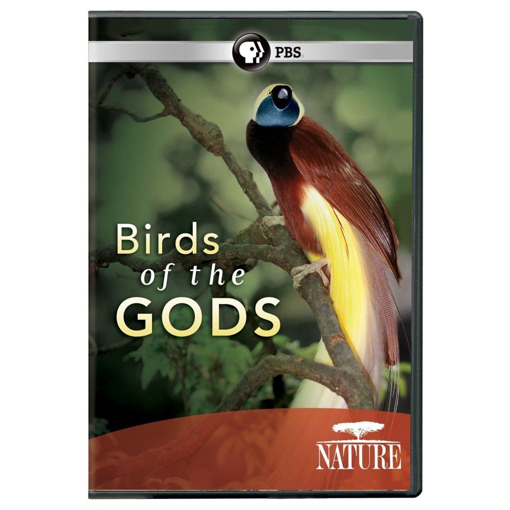 Birds of the GODS