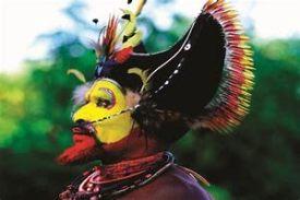 hulima-bird-of paradise (1)